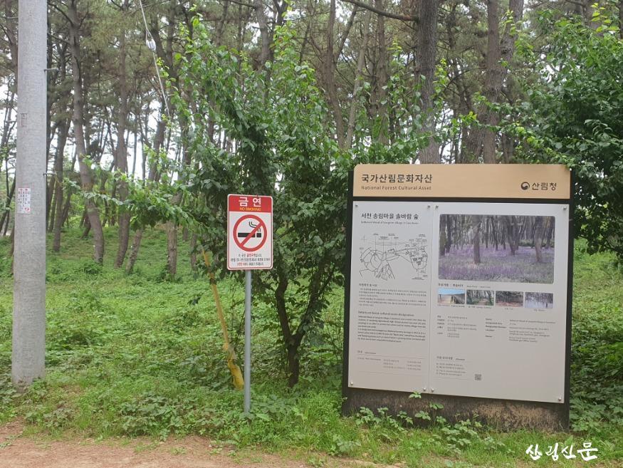 국가산림문화자산1 (2).jpg