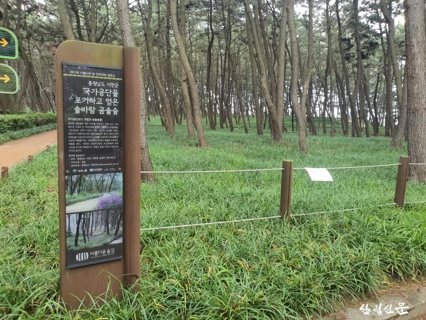 산림욕장.jpg