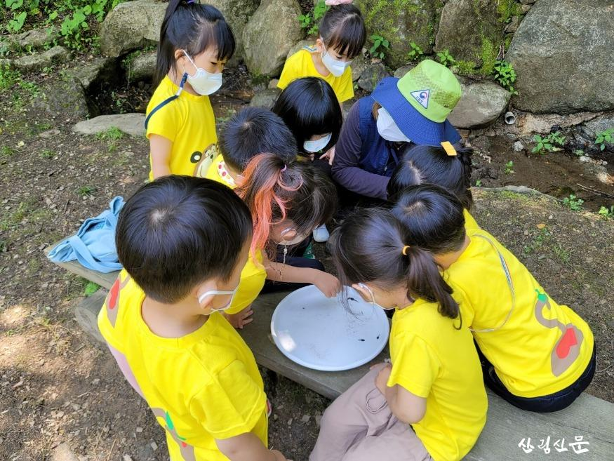 민북지역국유림관리소 배꼽유아숲 체험원 활동사진 (2).jpg