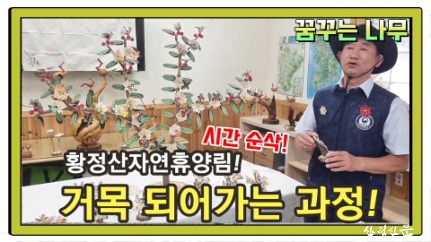 (사진 2) 황정산자연휴양림 숲해설-꿈꾸는 나무 영상 썸네일 입니다..jpg