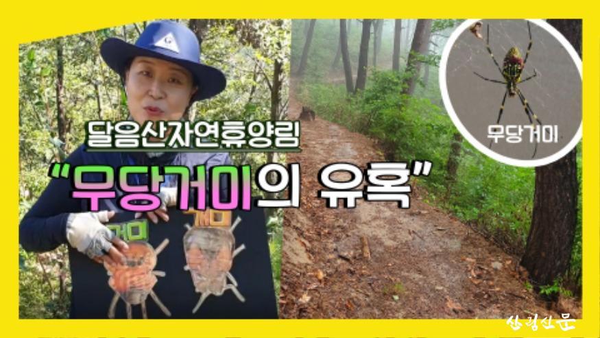 (사진 4) 달음산자연휴양림의 숲해설-무당거미의 유혹 영상 썸네일 입니다..jpg