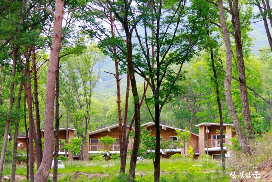 (사진 3) 국립대야산자연휴양림(경북 문경)의 산림문화휴양관 모습입니다..jpg