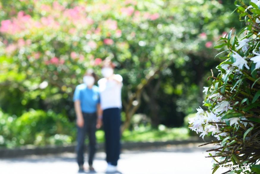 8월말 석곡 꽃3.jpg