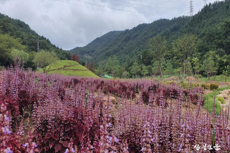 사본 -보은산테마공원.jpg