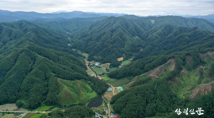 사진2_2022년 선도 산림경영단지횡성.png
