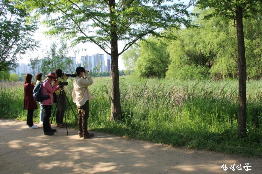 [크기변환]수원수목원 조성 현장 일원에서 천연기념물 원앙,참매 등 조류 32종 관찰(4).JPG