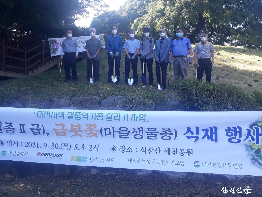 대전시, 멸종위기종'솔붓꽃 ㆍ 금붓꽃'복원 나섰다03.jpg